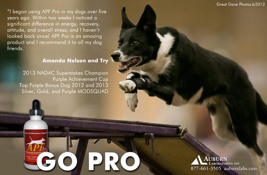 canine apf pro