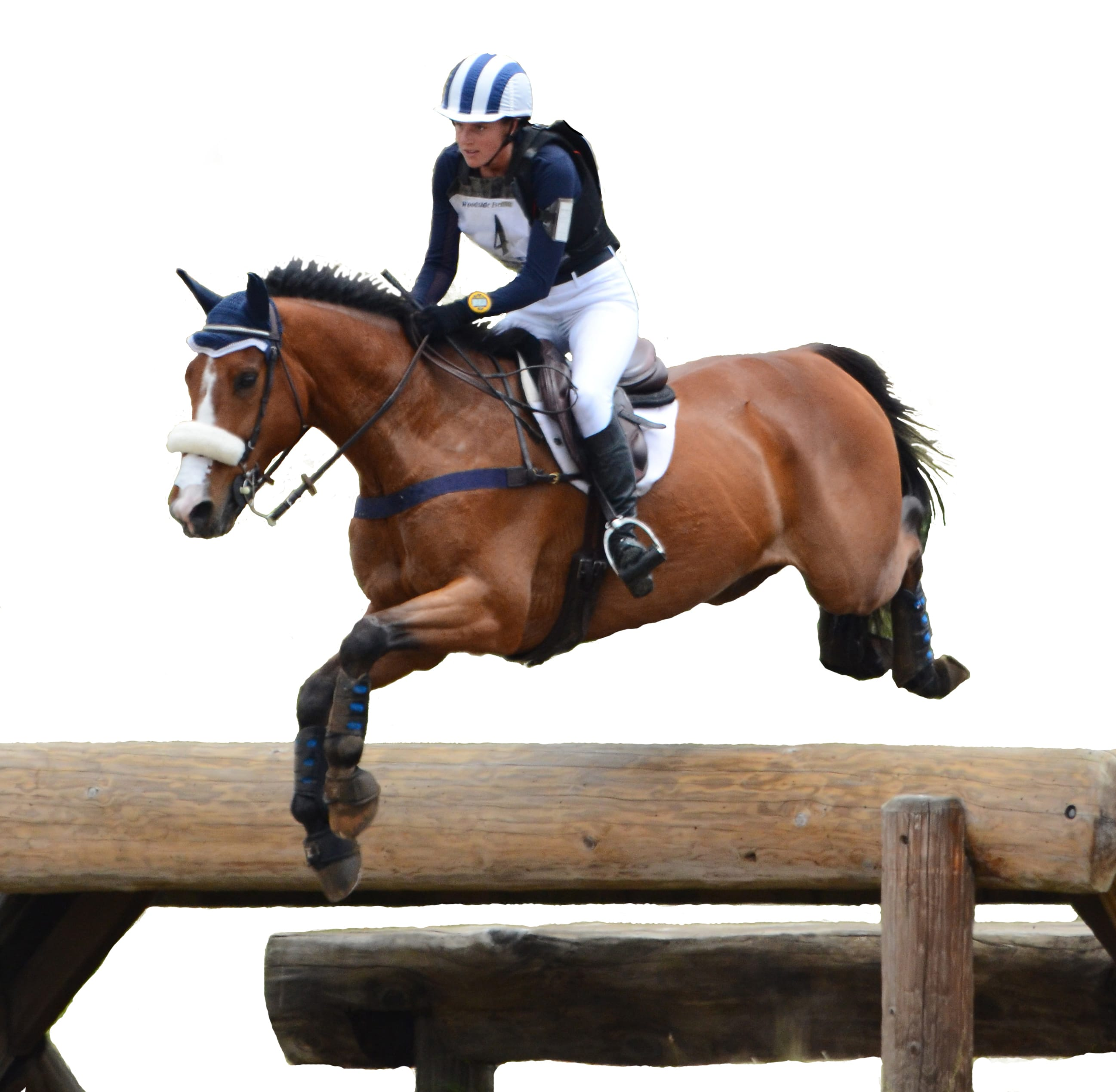 Horse jumping during competition