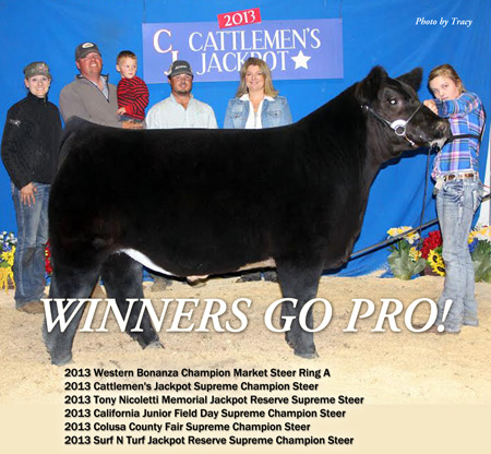 traynham steer award winner